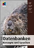 Datenbanken - Konzepte und Sprachen (mitp Professional)