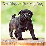 Der Mops The Pug Dog 2019 - Broschürenkalender - Wandkalender - mit herausnehmbarem Poster - Format 30 x 30 cm