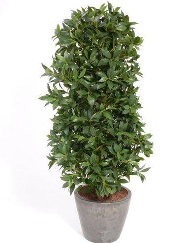 set-2-x-kunstliche-lorbeersaule-getopft-grun-uv-sicher-195-cm-kunstpflanze-lorbeer-baume-kunstbaum-a
