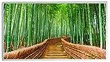 Bildheizung Infrarotheizung mit Digitalthermostat - 5 Jahre Herstellergarantie - Unsere Geräte sind geprüft auf Sicherheit durch TÜV - Heizt nach dem Prinzip der Sonne(Japan Bamboo,600)