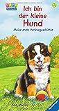 Ich bin der kleine Hund: Meine erste Vorlesegeschichte
