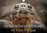 Tierische Persönlichkeiten im Loro Parque (Wandkalender 2018 DIN A4 quer): Besondere Tierportraits aus dem Loro Parque auf Teneriffa (Monatskalender, 14 Seiten ) (CALVENDO Tiere)