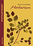 Herbarium Postkartenset: 10 Motive aus Rosa Luxemburgs Herbarium - Rosa Luxemburg