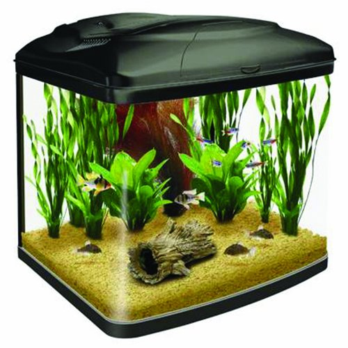 Interpet-Fish-Pod-Glass-Aquarium-Fish-Tank