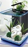 YANFEI 15L Desktop Mini Eco Planta Potencia Interna Iluminación Acuario Transparente Escritorio Regalo Creativo Multifunción Acuario Fish Tank