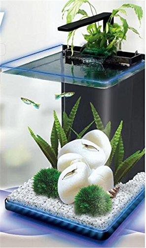 YANFEI 15L Desktop Mini Eco Planta Potencia Interna