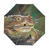 ALAZA Toad Gemälde Regenschirm Reise Auto Öffnen Schließen UV-Schutz-windundurchlässiges Leichtes Regenschirm
