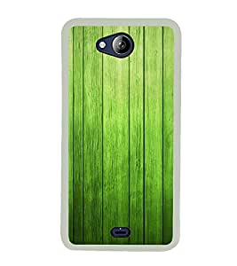Fuson Designer Back Case Cover for Micromax Canvas Play Q355 (WOod Wooden Door Entrance Greenish)