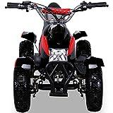 Miniquad Kinder Cobra ATV  rot / schwarz - 5