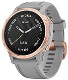 Garmin Fenix 6S Saphir Smartwatch Roségold/Grau 010-02159-21