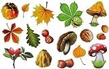Unbekannt 16 Stück: Fensterbilder Herbst - Blätter Pilze Kastanien und Herbstfrüchte - Sticker _ statisch haftend wiederverwendbar _ Fenstersticker Aufkleber selbstkleb..