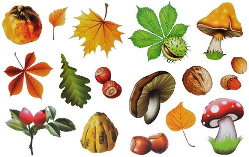 Unbekannt 16 Stück: Fensterbilder Herbst - Blätter Pilze Kastanien und Herbstfrüchte - Sticker _ statisch haftend wiederverwendbar _ Fenstersticker Aufkleber selbstkleb.. -