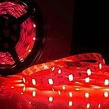 Striscia led 5050 colore Rosso 5 metri su ribon biadesivo