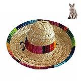 Petacc Hund Strohhüte Sonnenhut für klein Hunde und Katze Sonnenschutz Hut Hawaii Stil