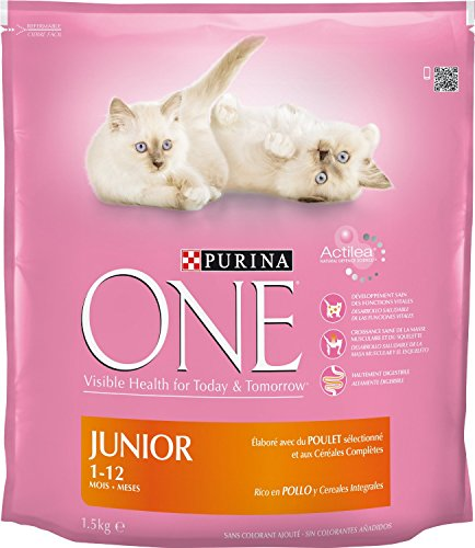 purina-one-junior-poulet-15-kg