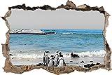 Pixxprint 3D_WD_5074_92x62 lustige Pinguine am Strand Wanddurchbruch 3D Wandtattoo, Vinyl, Schwarz/weiß, 92 x 62 x 0,02 cm