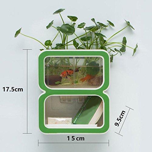 Tapis de bain Xuan - Worth Having Créative numéro 8 Style Porte-Savon Vert Ventouse Type étagère