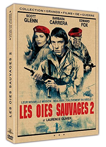 oies-sauvages-2