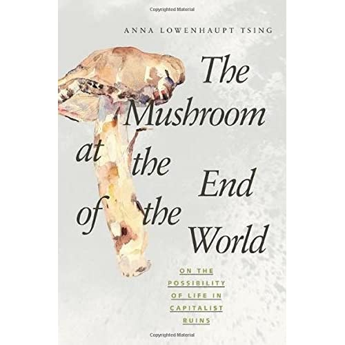 The Mushroom at the End of the World – On the Possibility of Life in Capitalist Ruins