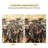 Campark Fotocamera da Caccia 14MP 1080P Fototrappola Infrarossi Invisibili 44pcs IR LEDs Visione Notturna Fino a 20m/65ft Impermeabile IP66 Macchine Fotografiche da Caccia per la Sicurezza Domestica e la Sorveglianza Della Fauna Selvatica by Campark