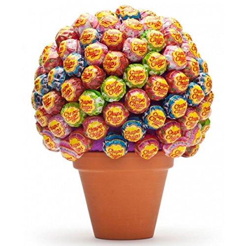 Preisvergleich Produktbild Bunter Lolli Baum - originelle Geschenkidee Partygeschenk Mitbringsel Gastgeschenk Geburtstagsgeschenk ausgefallen witziges Geschenk für sie/ ihn Lollis bunt