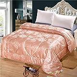 LBJNKBYX Winterbettdecke Extra Warm Bettdecke dauerhaft optimale Bauschkraft Gesunder Schlaf Einfache Pflege ähnlicher Liegekomfort formbeständig und reißfest ist,B,220x240cm
