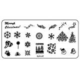 Best Kleancolor gel nail polish - Tonsee® Designs DIY Nail Art Christmas Image Stamping Review