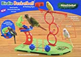 HappyBird | Wellensittichspielplatz Birdie-Basketball