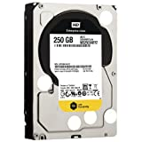 Western Digital WD2503ABYZ - Disco Duro Interno de 250 GB (SATA II, 3.5