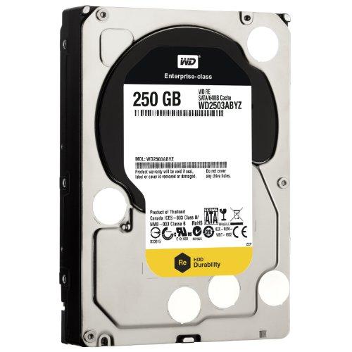 Western Digital Raid Edition interne Festplatte 250GB (8,9 cm (3,5 Zoll), 64MB Cache, 7200rpm, SATA III) -