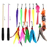 SLSON 14 Pack Cat Teaser Toy 2 Retractable Interactive Cat Wand and 12 Colourful Replaceable Cat Feather Toys with Bells For Indoor Cat and Kitten Catcher