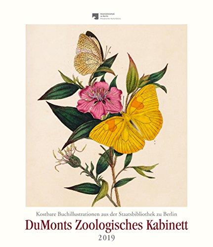 DuMonts Zoologisches Kabinett - Kalender 2019 - Edward Donovan - DuMont-Verlag - Kunstkalender mit exotischen Schmetterlingen - 34,5 cm x 40 cm - Kunst-kabinett