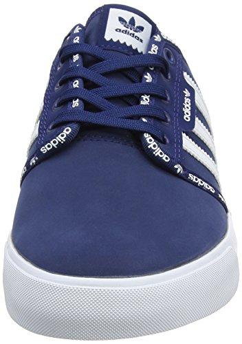 adidas Herren Seeley Skateboardschuhe Blau (Mystery Blue /ftwr White/ftwr White)