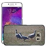 Grand Phone Cases Bild Hart Handy Schwarz Schutz Case Cover Schale Etui // M00141005 Cape Barren Gänse Gänse Tier // Samsung Galaxy S6 (Not Fits S6 EDGE)