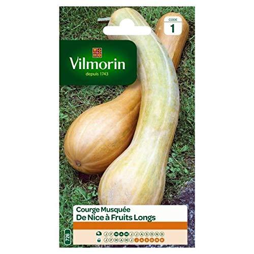 Vilmorin - Sachet graines Courge musquée de Nice à fruits longs