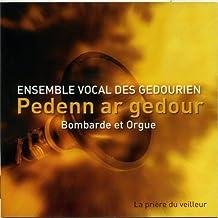 Pedenn ar gedour - Bombarde et orgue