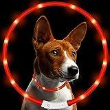 Vimmor - LED-Hundehalsband - verstellbares, mit USB wiederaufladbares, wasserdichtes, blinkendes LED-Hunde-/Katzenhalsband, Einheitsgröße