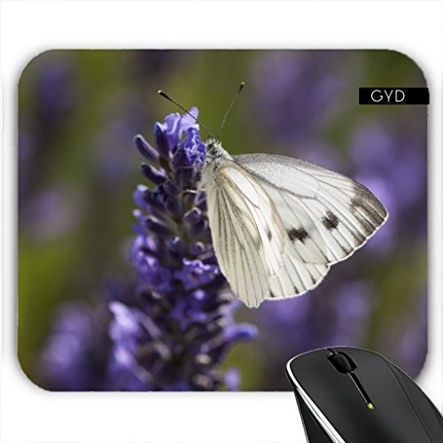 mousepad-white-butterfly-on-lavender-by-utart