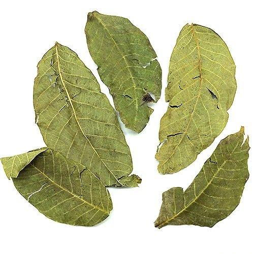 Biotope Aquatics Ltd Borneo Wild Nussbaum -, natur, Blätter für Cherry-Tiger für Garnelen -