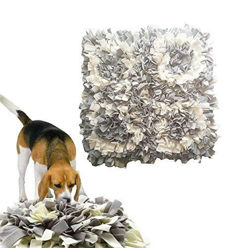 Biback Schnüffelteppich Hunde Hund Riechen Trainieren… | 00784028988181
