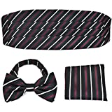 PenSee Formal Multi Color Stripe Pre-tie...