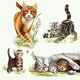 Ambiente servilletas de cena / fiesta ca.33x33 Cats Family - Familia De Gatos - Perfetto Como Regalo