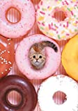 TINY CAT FLEXI JOURNAL