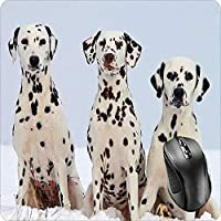 BGLKCS Mouse Pad Fabric Topped Rubber Backed Dalmatian Carriage Spotted Coach Firehouse Plum Pudding Dog Puppy Canine