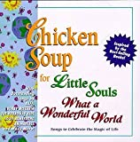 Chicken Soup For Little Souls: What A Wonderful World - Songs To Celebrate The Magic Of Life by Various Artists