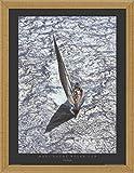 Carlo Borlenghi Stampa D'Arte e Cornice (MDF) Oro Vittoriano - Maxi Yacht - Rolex Cup (80 x 60cm)
