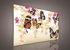 leinwandbild bild wandbild bilder wandbilder canvas bunte schmetterlinge 295 o1. Black Bedroom Furniture Sets. Home Design Ideas