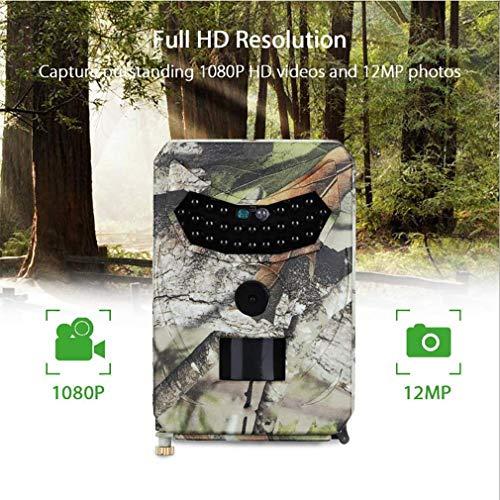 "Space element Wildkamera 1080P 12MP Trail Game Kamera Motion Activated Night Vision mit 2,4""LCD-Display IP66 wasserdichtes Design"