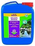 Sera 07462 Pond phosvec 2,5 Liter für 25.000 Liter - Schützt vor Algen - Schneller, schonender und dauerhafter Phosphatbinder