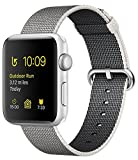 Apple Watch Series 1 38mm Smartwatch Gold Aluminum Case Concrete Sport Band 38MM Silver Case/Pearl Woven Nylon Band Image